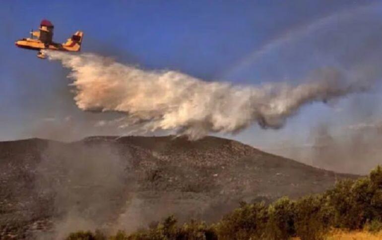 Υπό έλεγχο η φωτιά σε δασική έκταση στο Ωραίο