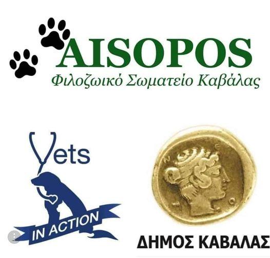Φιλοζωϊκό Σωματείο Καβάλας «Αίσωπος» / Vets in Action: Δωρεάν στειρώσεις σε αδέσποτα ζώα (25-28/9/2021)